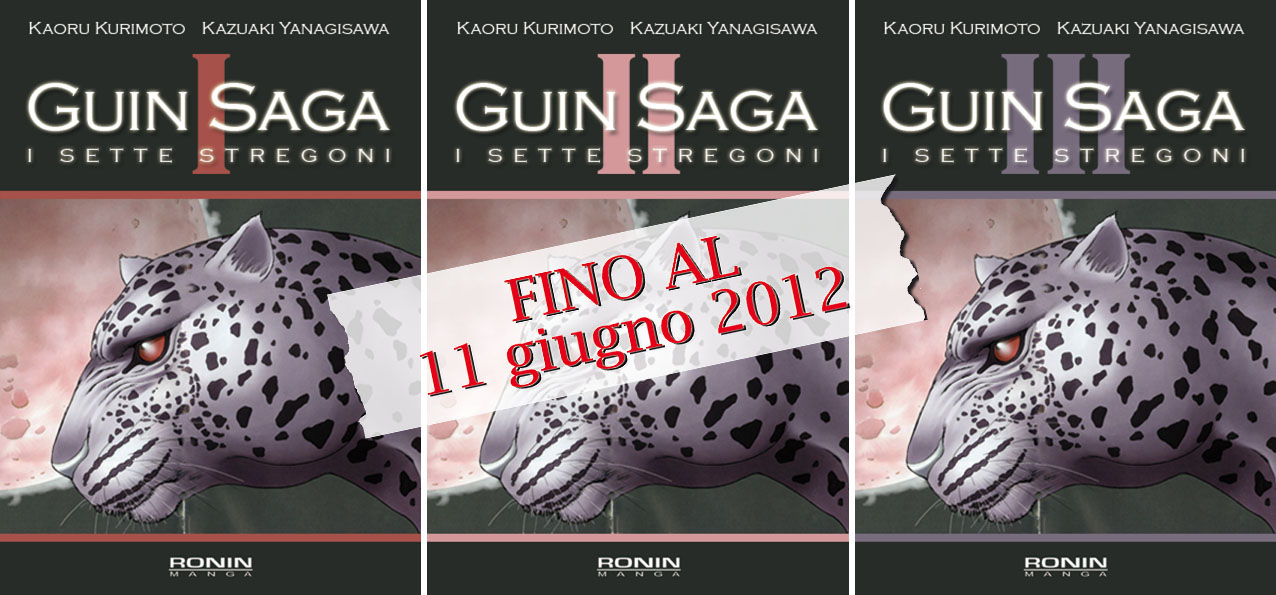Guin Saga serie completa offerta