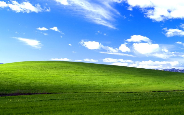 Windows XP standard wallpaper