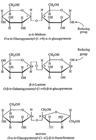 فرمول ساختاری دی ساکارید ها