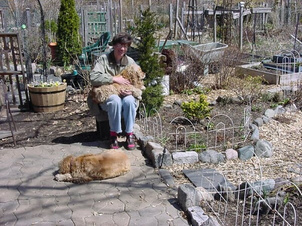 Me & my former canine companions relaxing in the garden, early spring 1999.