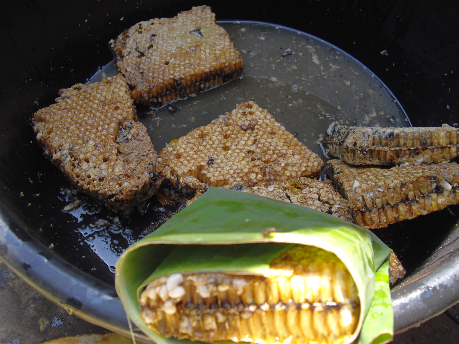Miel aux abeilles