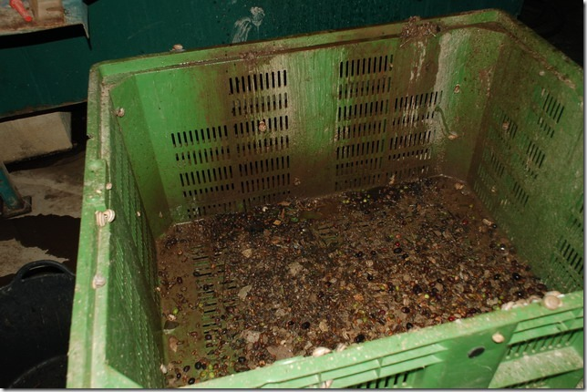 橄榄洗出物